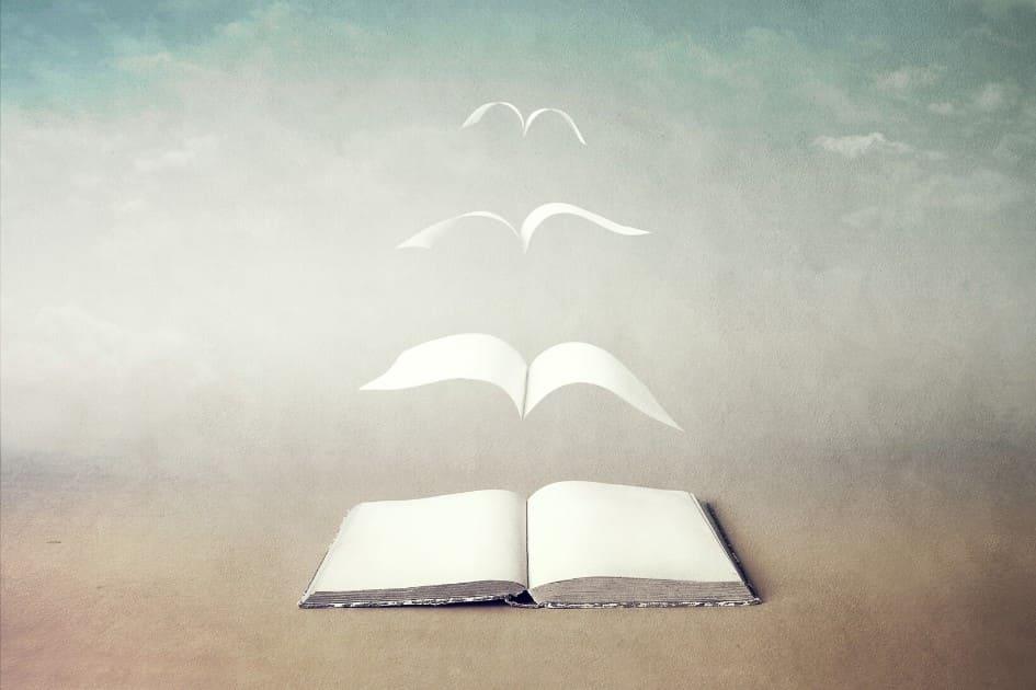 Le pagine di un libro aperto che prendono il volo