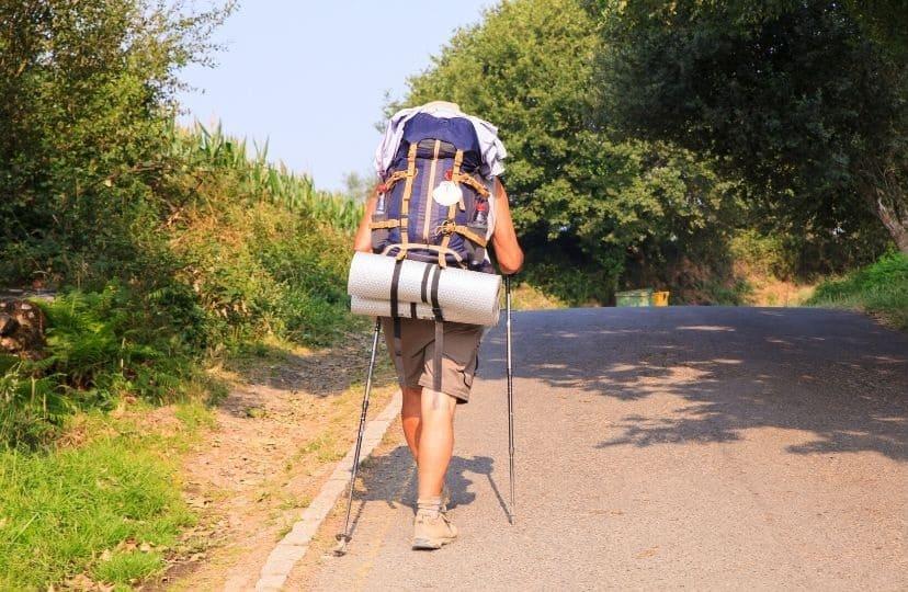 Pellegrino cammina da solo