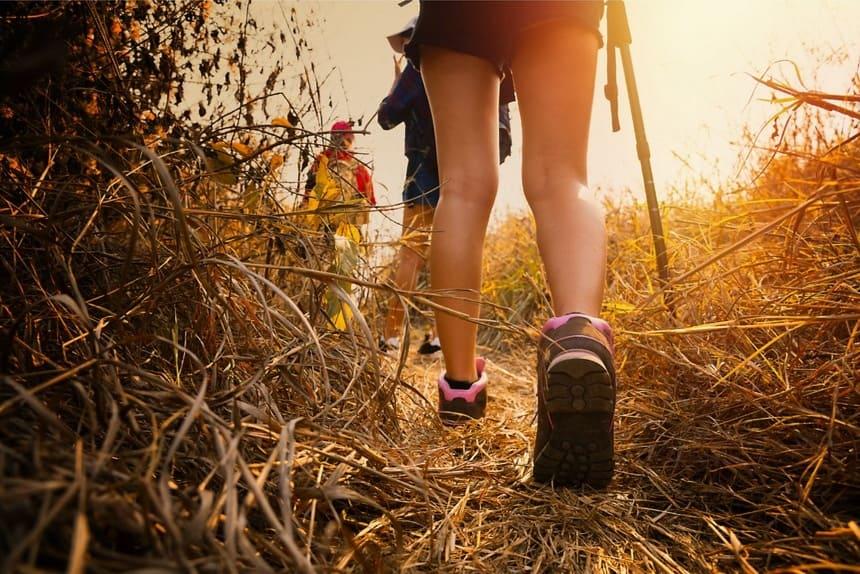 Persone in cammino