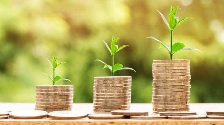 Pile di monete da cui spuntano piante