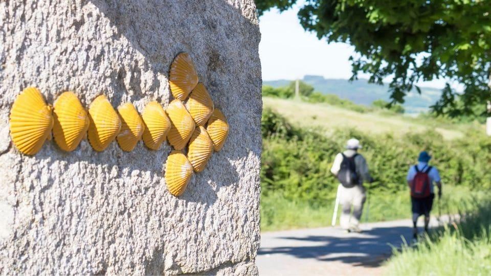Una freccia gialla fatta di conchiglie