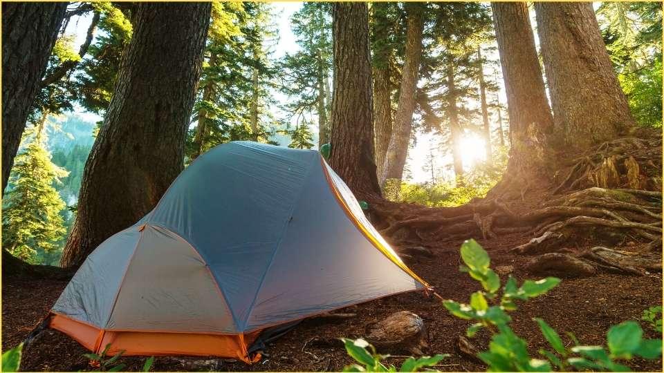 una tenda in un bosco