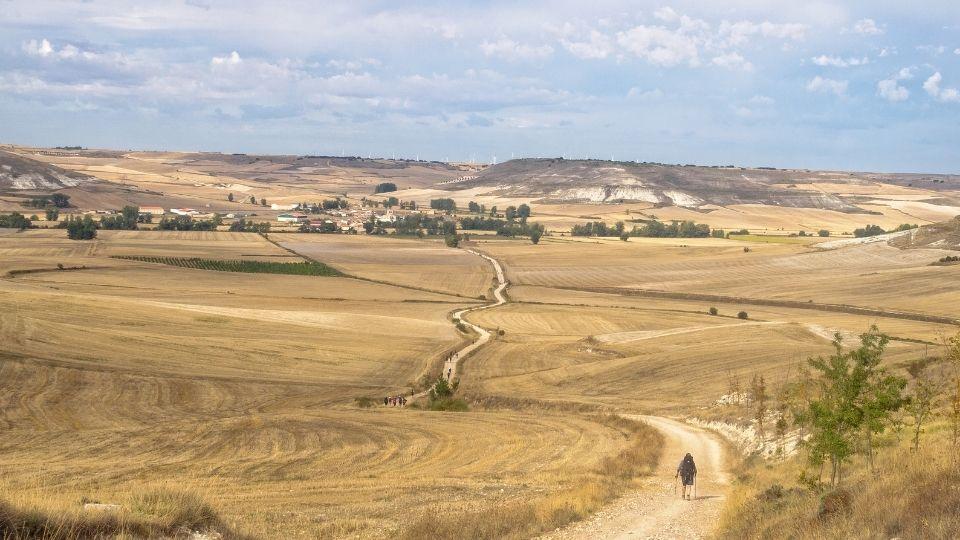 pellegrino in cammino tra i campi di grano