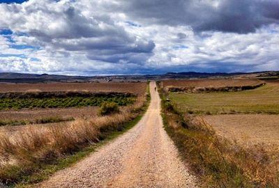 lungo sentiero tra i campi di grano
